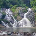Taman Negara West Malaysia Tours