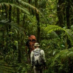 Trekking & Ecotour In Sumatra